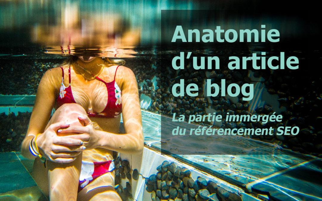 Anatomie d'un article de blog : la partie immergée du référencement SEO